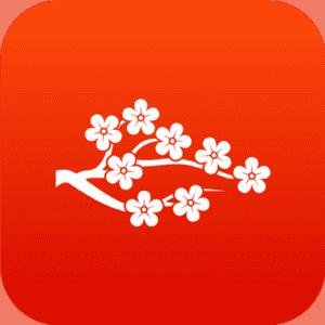 массаж веточка сакуры
